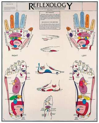 Reflexology Chart Laminated